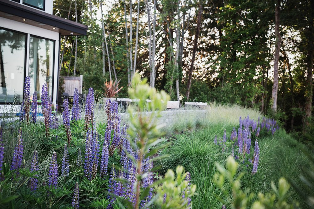 SUSTAINABLE LANDSCAPE DESIGN - Greenspace Design, Victoria BC
